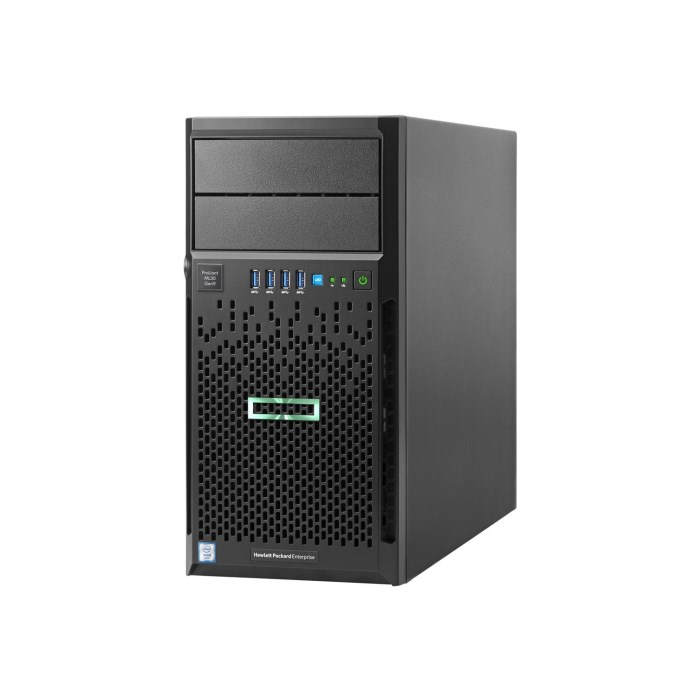 HP ProLiant ML30