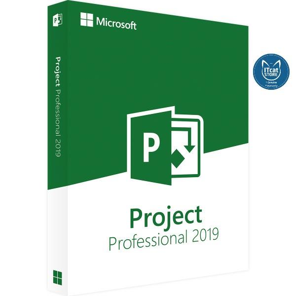 Phần mềm Project Pro 2019 32/64 English EM DVD [H30-05741]